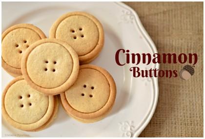 cinnamon_bisc2